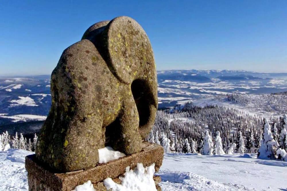 śnieżnik słoniątko, masyw śniżnika
